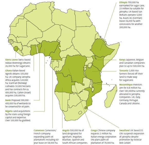 Biotreibstoffe Ethanol Landkauf in Afrika Anbauflächen Friedns of the Earth
