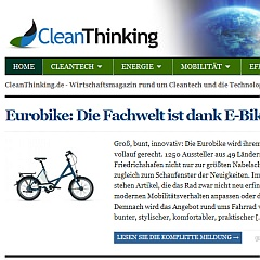 Cleanthinking Blog Screenshot