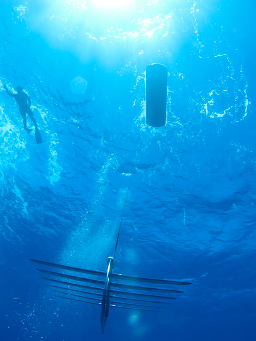 PacX Wave Glider Roboter