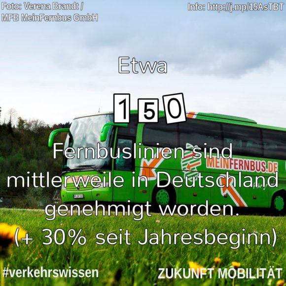 Zahl der genehmigten Fernbuslinien in Deutschland