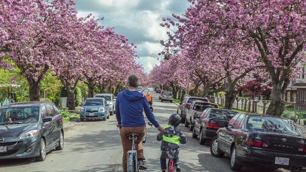 Radverkehr in Vanocuver Streetfilms